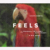#1. Calvin Harris Feat. Pharrell Williams, Katy Perry & Big Sean - Feels