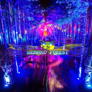 electric forest.jpg